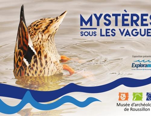 Mystères sous les vagues